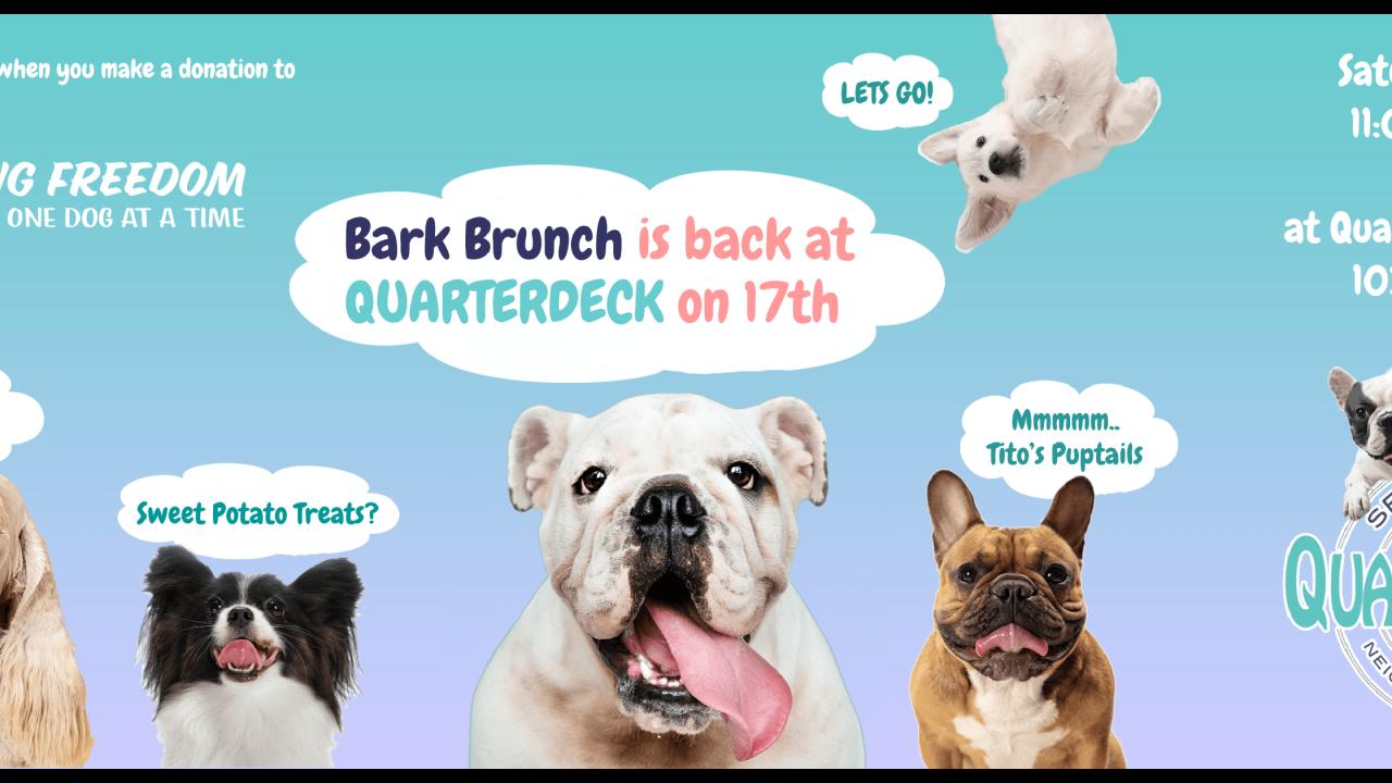 Bark Brunch